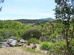 jardin vue des Baux