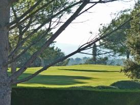 vue golf2